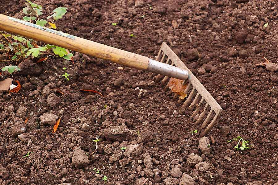 6 essential gardening tools